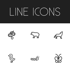 Set Of 6 Editable Zoology Outline Icons. Includes Symbols Such As Butterfly, Larva, Panda. Can Be Used For Web, Mobile, UI And Infographic Design.