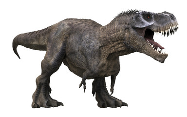3D rendering of Tyrannosaurus Rex roaring, isolated on a white background.