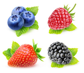 Collection of isolated berries with mint. Blueberries, strawberry, raspberry and blackberry with mint leaf isolated on white background with clipping path