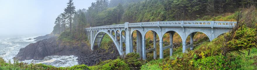 Photo sur Aluminium Pont Oregon Coast Bridges
