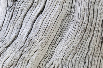 Wood texture / Rustic gray wood background with structural effect.