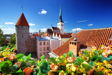 Wall Mural - View to old Tallinn in middle summer