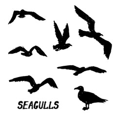 Seagulls - Set of 7 grunge hand-drawn birds 2