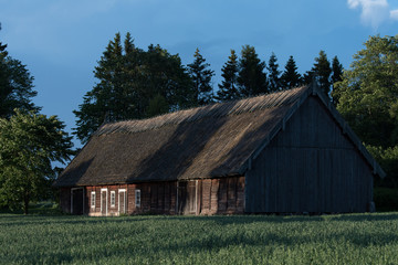 Old barn with grass roof