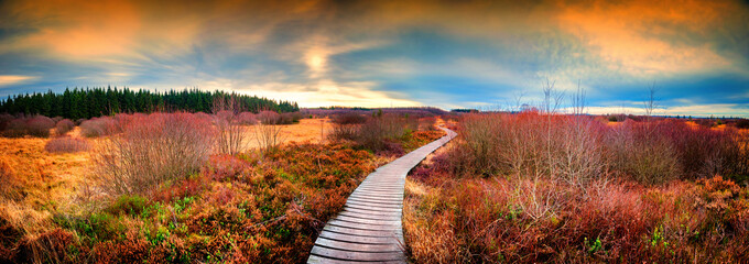 Panoramic autumn landscape with wooden path. Fall nature background Wall mural