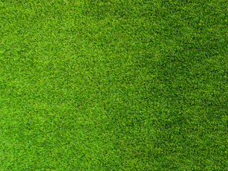 Texture green grass. Background of green turf grass. Texture coating of a football field. Green lawn