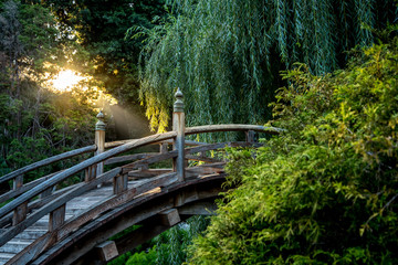 Zen setting of a bridge in a Japanese garden
