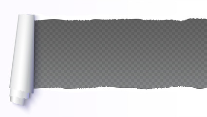 Realistic white torn open paper with space for text on transparent, horizontal background, holes in paper. Torn strip of paper with uneven, torn edges. Coiling torn strip of paper