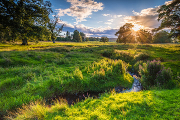 River Aln under Golden Light / The River Aln runs through Northumberland from Alnham to Alnmouth. Seen here meandering in farmland just after Alnham Wall mural