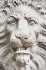Stone lion face close up.