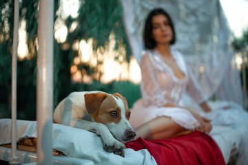 Young woman with dog sits on bed with bedding and baldachin near tree.