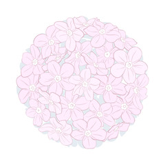 Flowers shaped in circle. Vector isolated bouquet