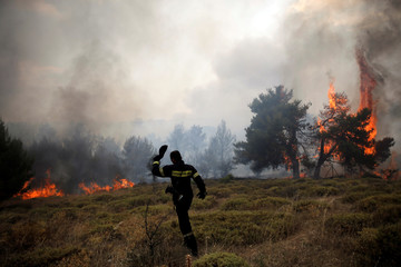 A firefighter walks on a field as flames rise during a wildfire near the village of Kapandriti
