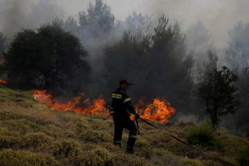A firefighter pulls a hose during a wildfire near the village of Kapandriti