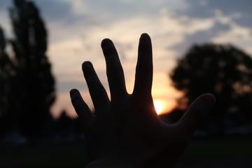 朝日を掴む手のシルエット