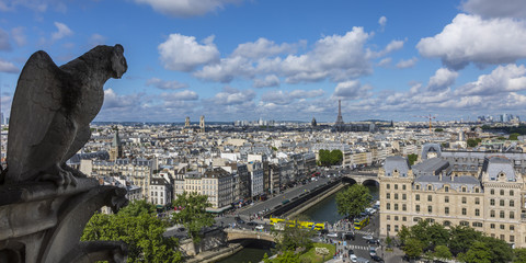 View from the Notre Dame Cathedral, Paris, France
