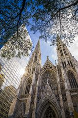 USA, New York City, Manhattan, St Patrick's Cathedral