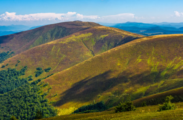 grassy slopes of Carpathian mountain ridge