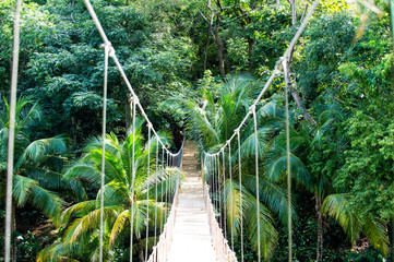 Zelfklevend Fotobehang Brug Jungle rope bridge hanging in rainforest of Honduras