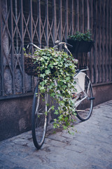 Old bike resting on the wall in retro style.
