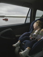 Nap Time By the Shore