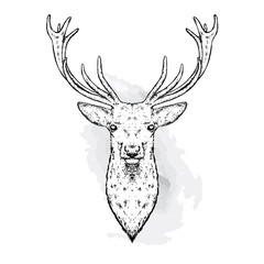 A beautiful deer. Vector illustration for a postcard or a poster, print for clothes. Fashion & Style.