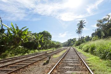 Railroad through Sri Lanka, Asia