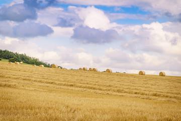 Fotoväggar - Landschaft im Sommer, abgeerntetes Kornfeld mit Strohballen