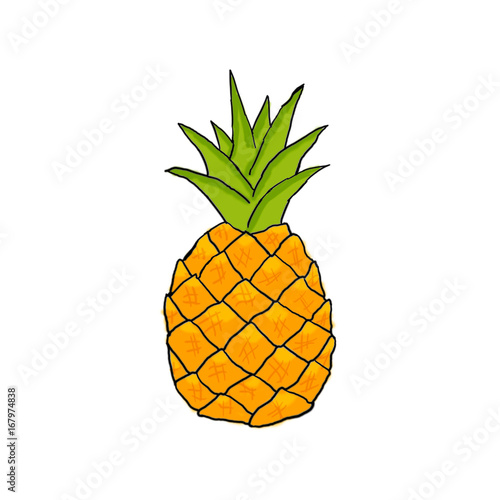 pineapple draw stock photo and royalty free images on fotolia com
