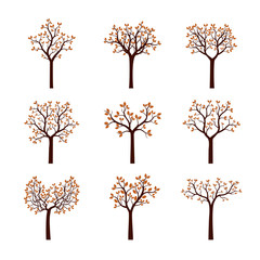 Set of autumn Trees with Leaves. Vector Illustration.