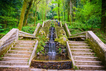 Stairs in the park of Bussaco. Coimbra. Portugal