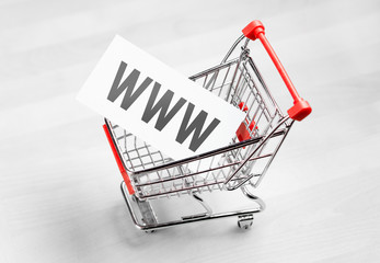 Buying domain name for company website. Online shopping, e commerce and internet store concept. Newsletter and email marketing. Miniature shopping cart with www letters.