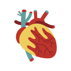 Human heart isolated vector icon