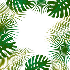 Tropical background. Palm leaves. A pattern of green exotic leaves. Border. Frame.