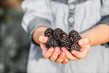 girl holding in hand fresh blackberries