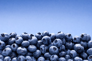 Background of blueberries, with place for text