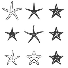 set of starfish icon, silhouette icon