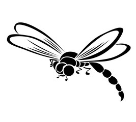Black dragonfly stylized silhouette on white background, isolate copy raster