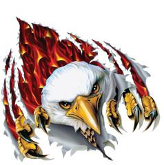 Poster Eagle eagle 3D