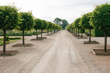 Beautiful garden road.