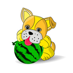 Yellow dog playing with watermelon, cartoon on white background.vector