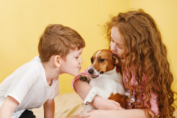 Children kissing a puppy jack russell dog.