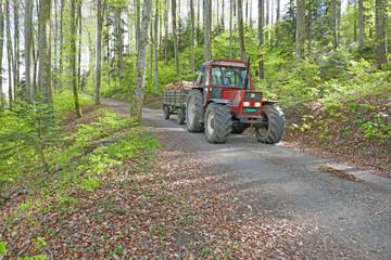 traktor mit holz, im wald, schweiz