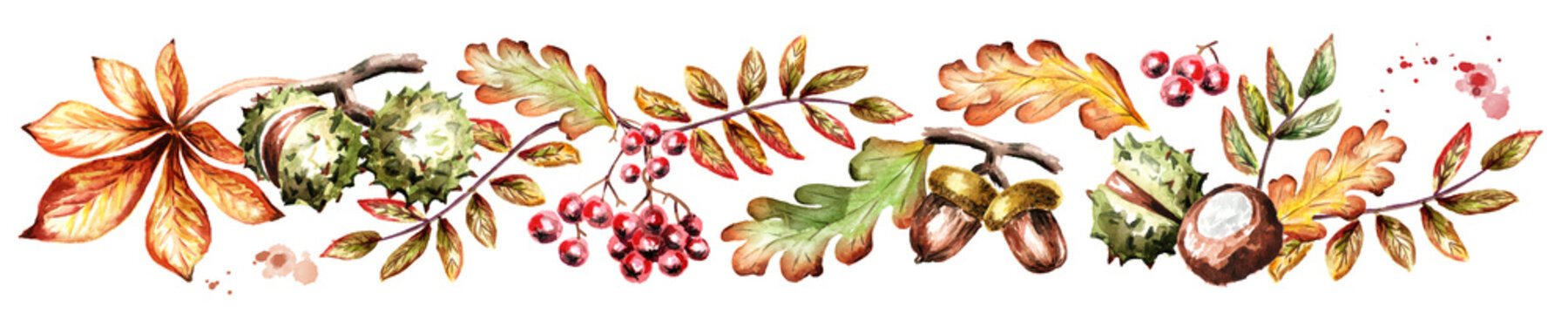 Colors of autumn horizontal. Watercolor hand-drawn illustration