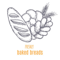 Hand drawn decorative bread bakery . Vector Illustration.