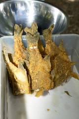 Fried fish in plastic container