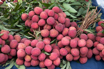 Fresh lychee fruit at market thailand in southeastasia.