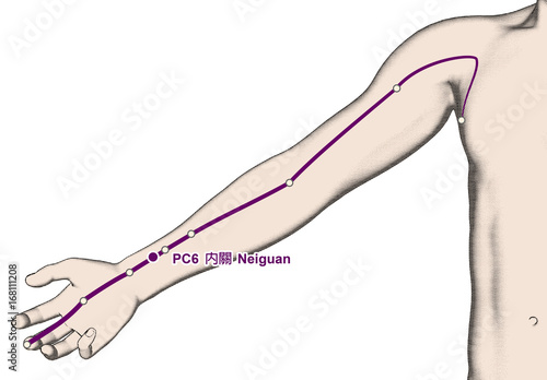 Drawing Acupuncture Point PC6 Neiguan, 3D Illustration