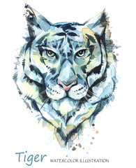 Watercolor tiger on the white background. African animal. Wildlife art illustration. Can be printed on T-shirts, bags, posters, invitations, cards, phone cases, pillows.