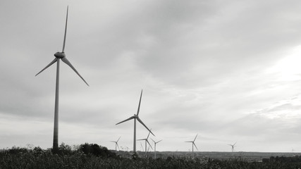 Wind turbines in the field, overcast. Clean and Renewable Energy, Wind Power, Turbine, Windmill, Energy Production